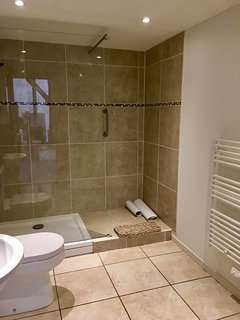 Family bathroom with luxury walk in shower.
