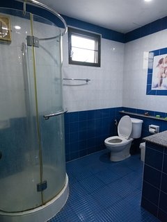 Downstairs bathroom with shower wash hand basin and toilet