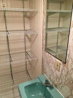 New storage area in front bathroom!