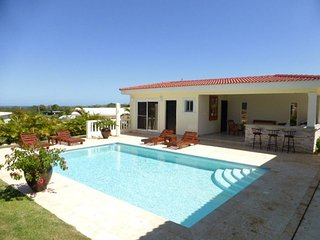 New ocean villa with palapa bar and BBQ by the pool area