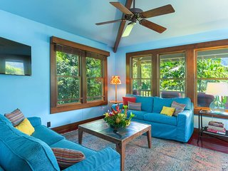 NEW LISTING! Hanalei waterfalls & mountain views, free WiFi, A/C in the bedrooms