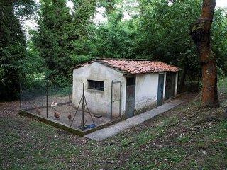 6 bedroom Villa in Balbano, Tuscany, Italy : ref 5247681