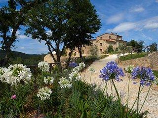 14 bedroom Villa in Castello di Tocchi, Tuscany, Italy : ref 5247841