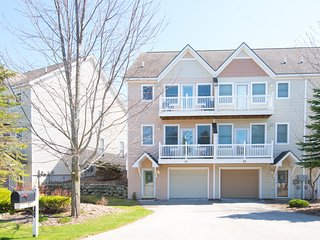 Harbor Village Townhouse Condo at LK MI