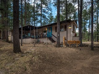 Quiet Cabin w/ WiFi, Grill, Big Screen TV & Conservation Views