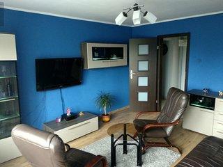 Penguin Rooms 5310
