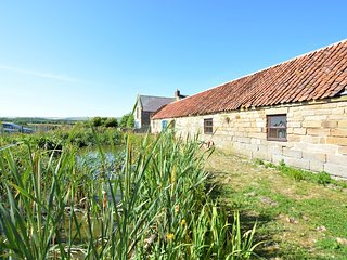 62168 Cottage situated in Staithes