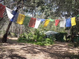 Pachamama Forest Retreat