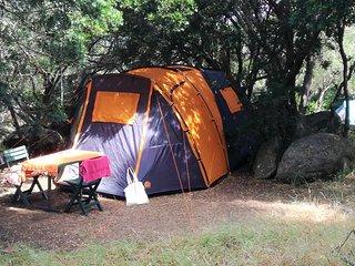Tente orange