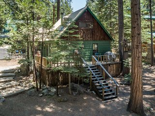 NEW LISTING! Cozy family cabin in forested setting w/wraparound deck-near slopes