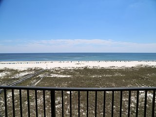 Phoenix VII 503 ~ Direct Gulf Front, Right on the Beach, Walk to Shopping & Dini