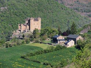 Grande maison de vacances en plein nature a l'entree des Gorges du Tarn