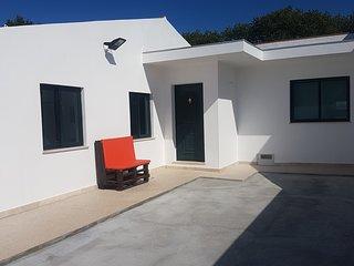 Beautiful house near the beach