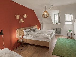 Spacious apartment in the center of Prague with Lift, Parking, Internet