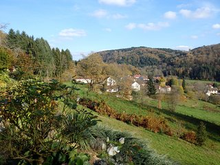 Villa de charme et insolite au cœur des Vosges du Sud