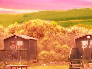 Summer Glamping Cabin 5