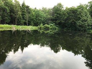 Private Lake! Vacation Home In Pocono Mountains!