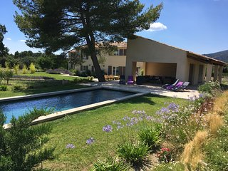 Le Mas Theotime, impressive, newly renovated house