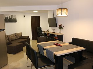 Timisoara City Apartments #201