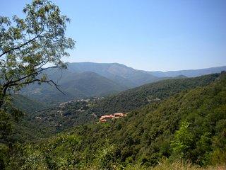 Entre Chênes Verts et Chataigniers, villa avec piscine