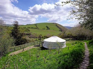 Old Chapel Farm orange Yurt