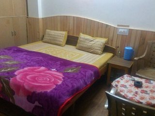 Holiday Home Barot (Double Room 4)