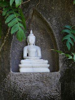 Buddha in the Secret Garden