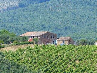 chianti castle near Siena  B3