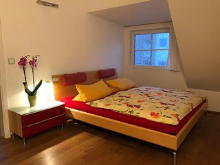 Luxury 120m2/4 Room incl.6 Pers House (15 Minutes away from Dusseldorf)