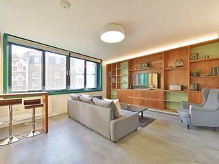 Beautiful and modern two bedroom apt in the heart of Soho/ Central London (OC2)