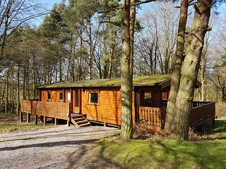 Connie Cottage, Log Cabin in Kenwick Park Woods, Louth, Lincolnshire