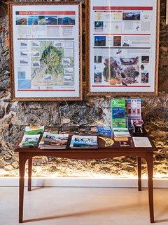 Informacion turistica de actividades a realizar en la isla