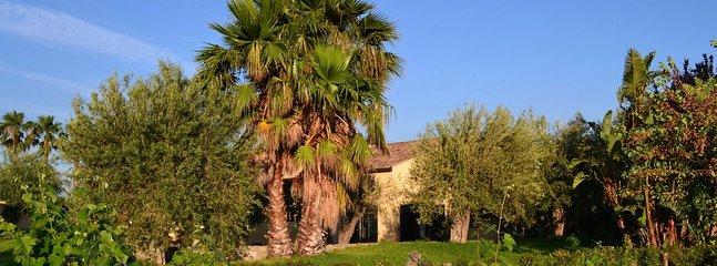 la villa si trova nel verde di un meraviglioso giardino