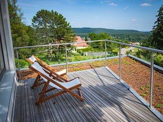 Le Holzberg (8 à 12pers),espace Wellness-proche COLMAR, route des vins et nature