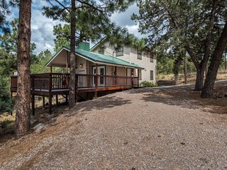 Cabin near Downtown w/ WiFi, Fireplace, Grill, Hot Tub & Conservation Views