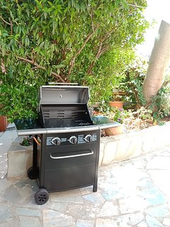 Grill and Barbeque area