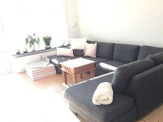 Nice Copenhagen apartment near Hellerup st