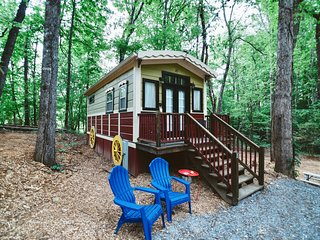 Gypsy Cottage Near the Smokies #16 Sabina