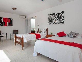 Casa Cielo - Zebra 3