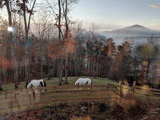 Daffodil Hill Farm Romantic Luxury Carriage House 5 miles to Downtown Blue Ridge