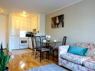 Comfy Chic apartment next to canal Lachine in Montreal!