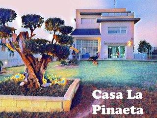 Casa Pinaeta, moderna, jardin, spa y piscina interior, cerca de la playa