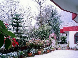 Higher than Solan city in altitude, the place still is blessed with snow in cold winters.