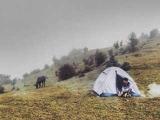 Meadow area 1 hour hike away