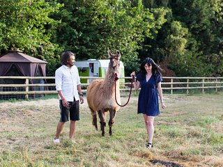 Glamping with Llamas, in Nayeli (I Love You)