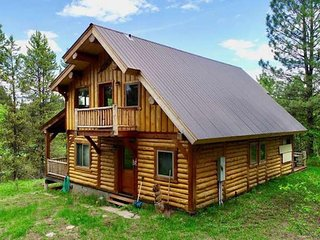 Secluded cabin with beautiful forest views, trails, and full kitchen!