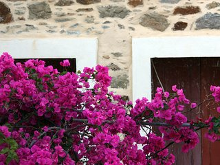 Spitaki - Small house in Volissos