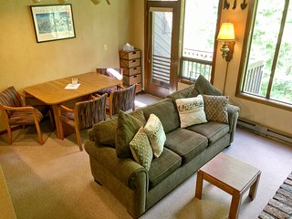 Snowater Family Condo #59 - FIREPLACE, WASHER/DRYER, DISHWASHER, DVD, SLEEPS-6!