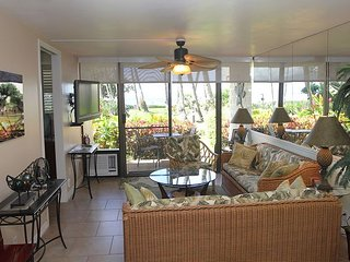Gorgeous Remodeled Maui Ocean View, Ground-Floor Condo; 2BR/2BA