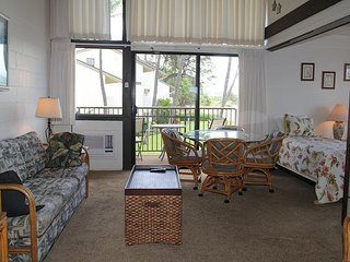Maui Vacation Rental in Ma'alaea; Beach Front & View Condo; 2BR/2BA Sleeps 7